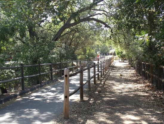 the bike trail accommodates ojai bikes