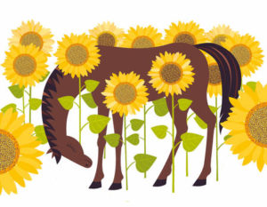 cartoon horse in sunflowers